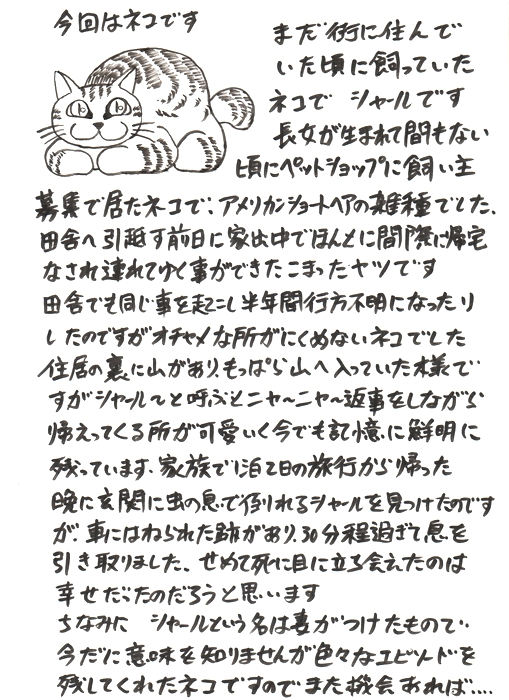9a.jpg